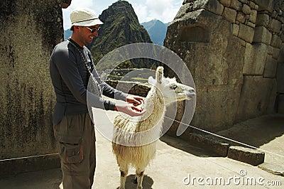 Tourist and llama