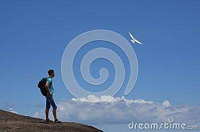 Tourist on mountain & flying bird.