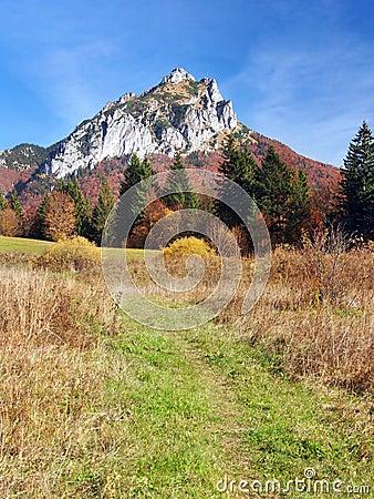 Free Tourist Path To Velky Rozsutec, Slovakia Stock Images - 35788624