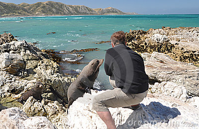 Tourist taking photo of a young curious seal