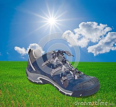 Touristic shoe on a grass