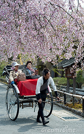 Tourists at Cherry Blossom Time Editorial Stock Image