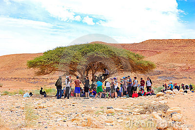Tourists in desert shade, Israel Editorial Stock Photo