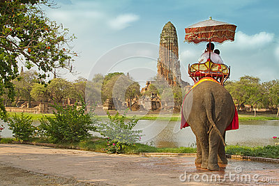 Tourists on an elephant ride tour