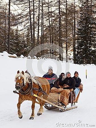 Free Tourists Enjoy A Horse-Drawn Sleigh Ride Stock Photos - 28435653