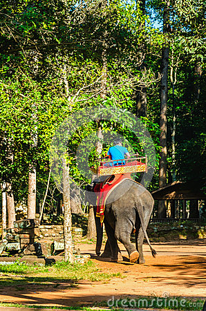 Free Tourists Ride An Elephant On Howdah Chair Cambodia Stock Photo - 54924820