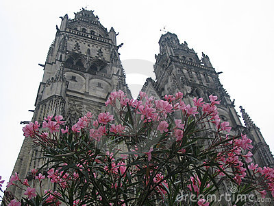 Tours Cathedral with flowers