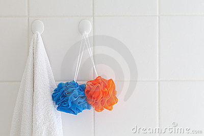 Towel and mesh bath sponges