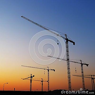 Tower Cranes Sunset