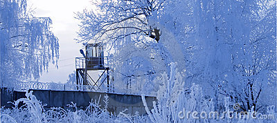 Tower And Frosty Trees