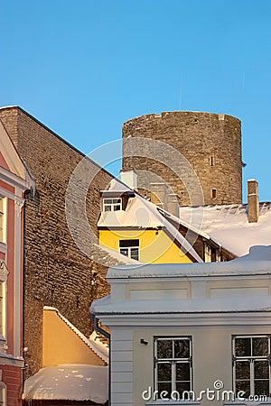 Tower Tallin