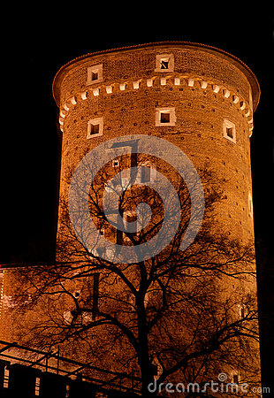 Tower at Wawel -  Krakow