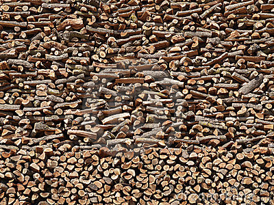 Towering Stack of Firewood