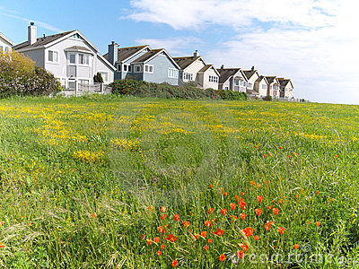 Town houses on green meadow