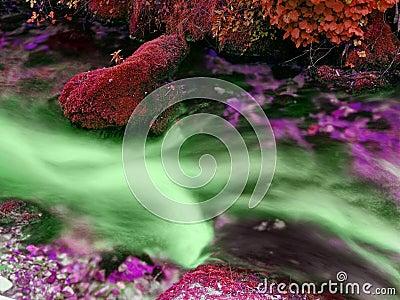 Toxic stream