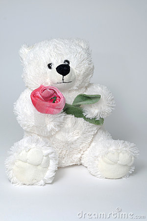 Free Toy Bear Holding Red Rose In Arms Royalty Free Stock Photos - 8932118