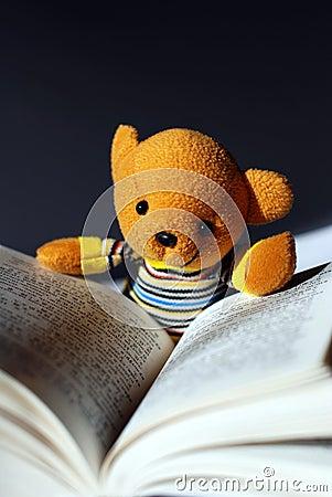 Toy bear reading