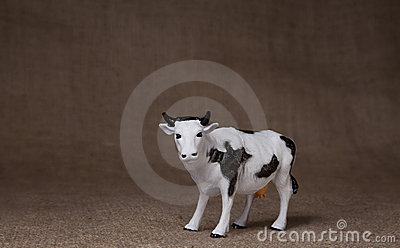 Toy cow on hessian (burlap) cloth