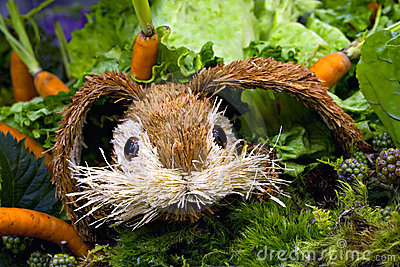 Toy Easter bunny hiding in carrot garden