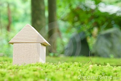 Toy house on moss