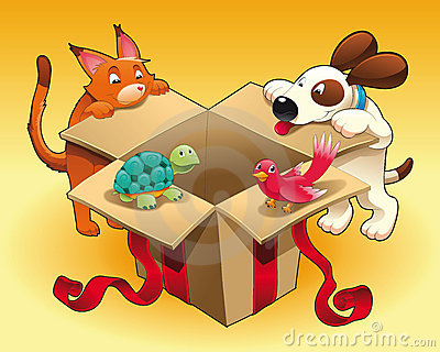 Toy and pets