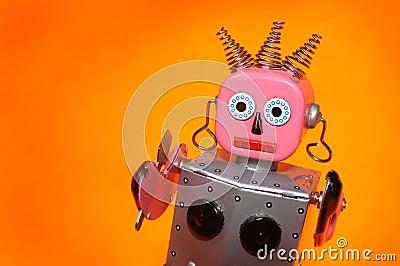 Toy robot maid