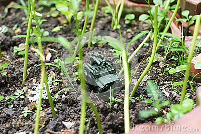 A toy soldier through the backyard garden