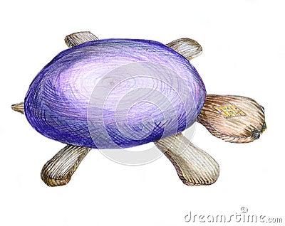 Toy tortoise