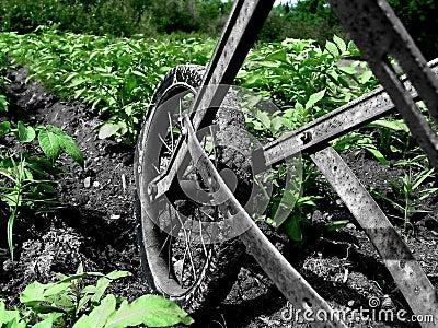 Trädgårds- ploga upp