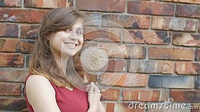 Träumerisches Mädchen mit flaumigem großem Löwenzahn auf dem Hintergrund der Wand des roten Backsteins, schönen des junge Frau sm stock video footage