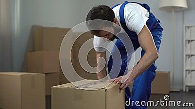 Trabajador de la compañía móvil que embala y que lleva cuidadosamente las cajas, servicios de calidad metrajes