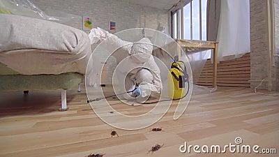 Trabajador del control de parásito con el rociador que se coloca en casa y debajo del sofá metrajes