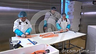 Trabajadores que cortan un prendedero de salmones en la tabla en la fábrica de los pescados Tiro del carro metrajes