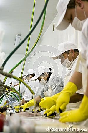Trabalhadores em uma planta