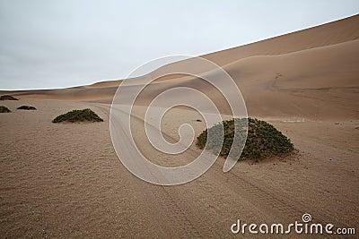 Track through the Desert Dunes in Namibia
