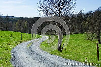 Track between meadows