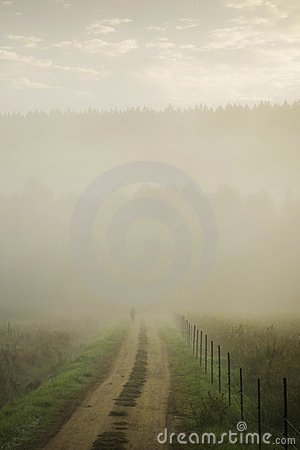 Track in misty landscape