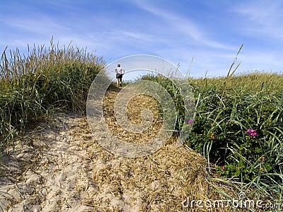 Track over grassy sand dune