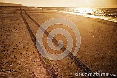 Tracks on the beach