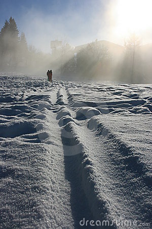 Tracks on the snow emerging from fog