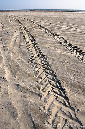 Tracks From Tire On Sand