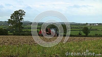 Tractor en suelo de cultivo almacen de video
