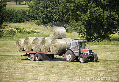 Tractor with hay bales