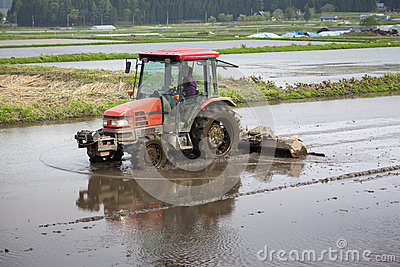 Tractor Prepares Rice Paddy