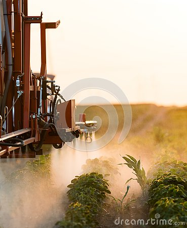 Free Tractor Spraying Pesticides At Soy Bean Field Royalty Free Stock Photography - 136713367