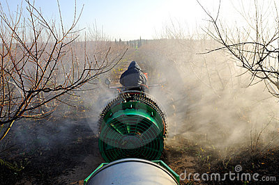 Tractor spraying plantation