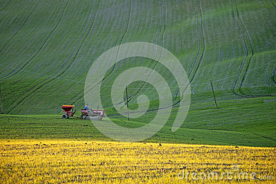 Tractor working on green and yellow grass