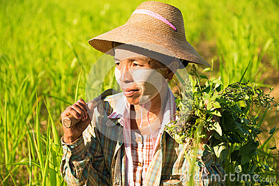 Traditional Asian female farmer