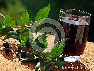 Traditional berry s Liqueur of Sardinia