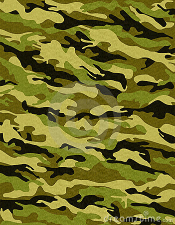 Traditional camouflage